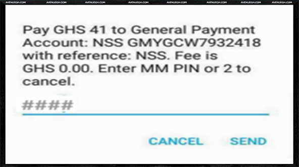 National Service Online Registration-pay41cedis