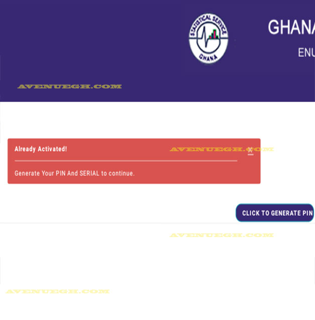 Ghana-Statistical-service-GENERATE-PIN