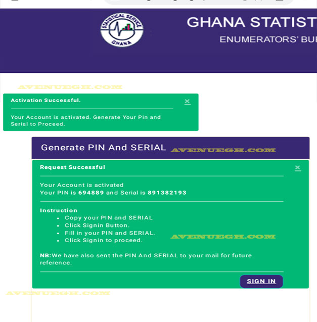 Ghana-Statistical-service-pin-generated