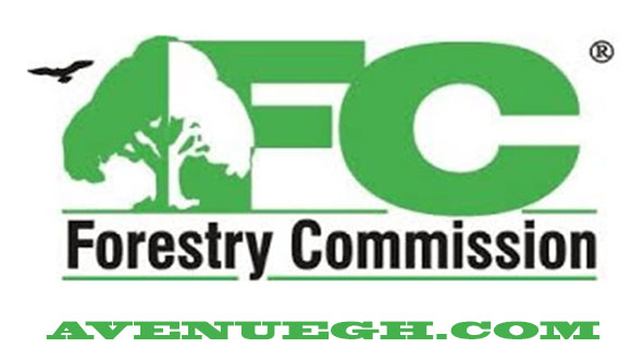 Ghana-Forestry-Commission-Youth-in-Afforestation